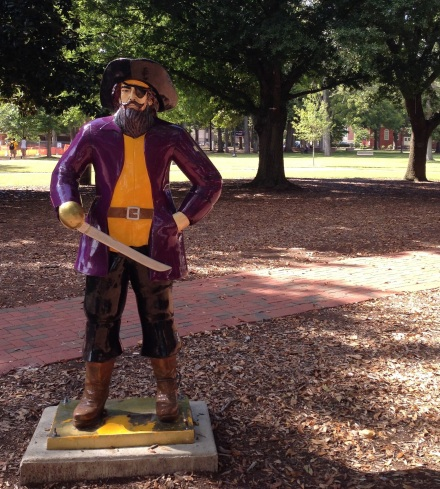 ECU pirate